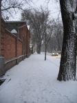 Зимняя Просвещения от Пушкинской в сторону ЮРГТУ (НПИ)