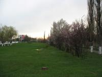 Газон вдоль проспекта Баклановского