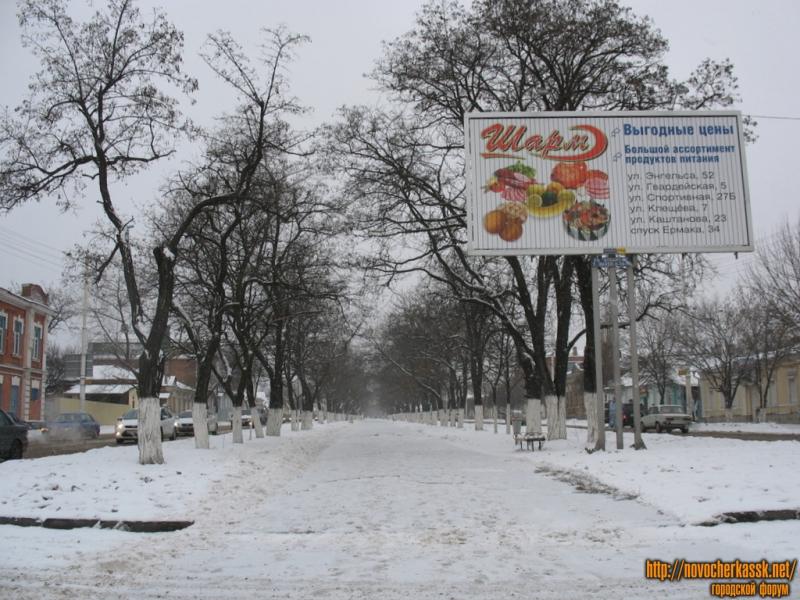 Аллея проспекта Баклановского от перекрестка с Пушкинской к перекрестку с Галины Петровой