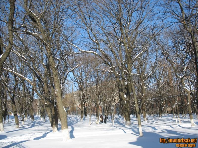 Парк на территории ЮРГТУ (НПИ)
