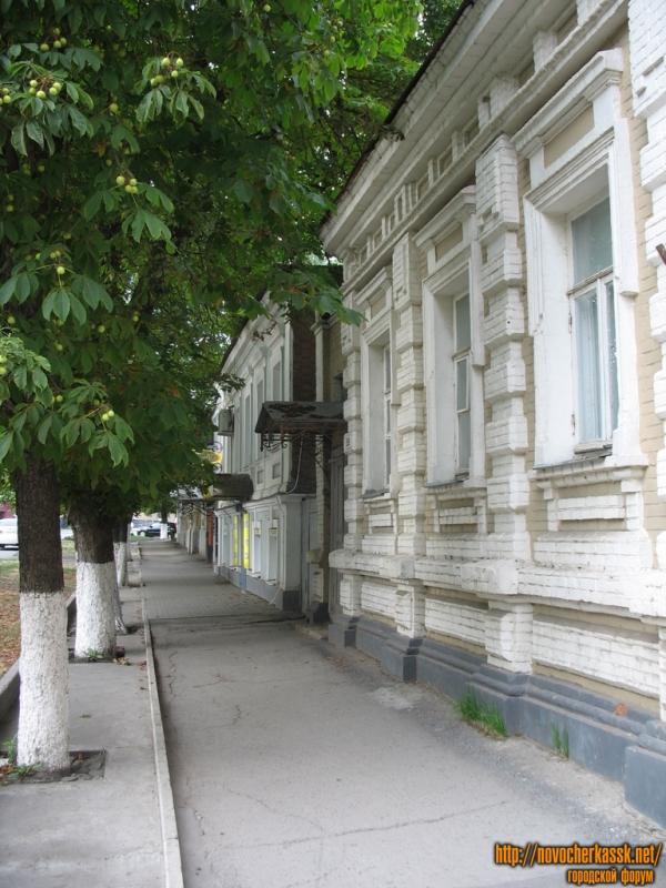 Каштаны вдоль Московской улицы