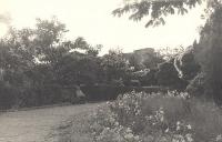 Городской (Александровский) парк