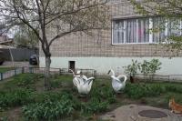 Двор ДСК Наука, ул. Залесская, 2
