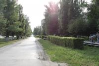 Аллея вдоль рощи по проспекту Баклановскому