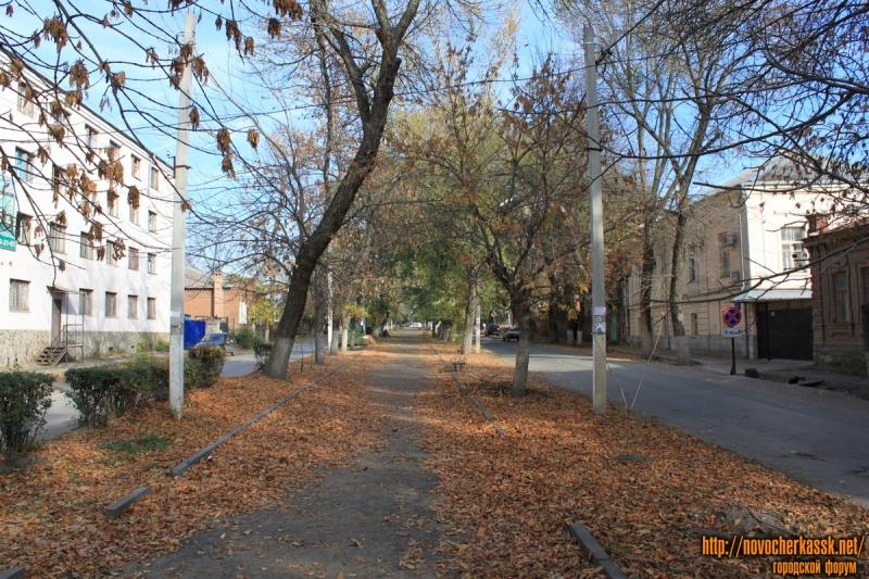 Аллея улицы Дубовского