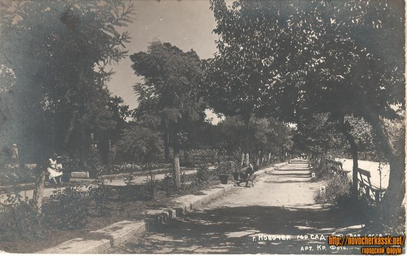 Аллея городского парка