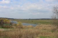 Пойма реки Тузлов