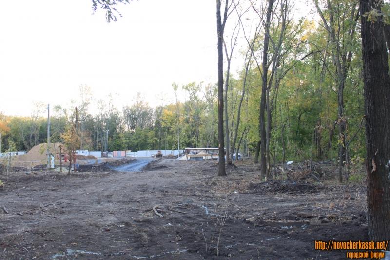 Строительство детского сада в роще