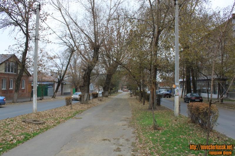 Улица Дубовского. Аллея