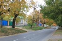 Вид улицы Ленгника
