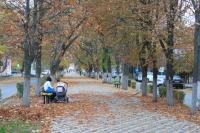 Аллея на улице Атаманской
