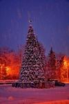 Новогодняя ёлка 2015 в Новочеркасске