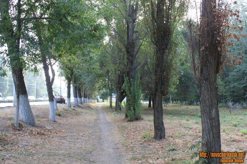 Дорожка вдоль проспекта Баклановского