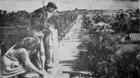Строительство дома для рабочих завода горнобурового оборудования. 1954 год. Панорама Московской