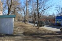 Аллея на улице Александровской