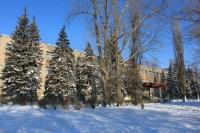 Школа-лицей №7. Проспект Баклановский, 136