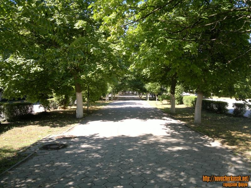 Аллея Платовского проспекта