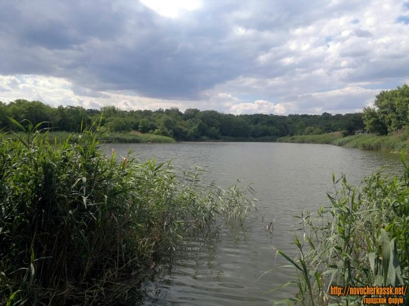 Второй Новочеркасский пруд