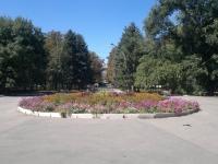 Цветочная клумба парка ДК НЭВЗ