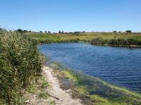 Река Тузлов у посёлка Новосёловка