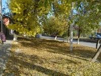 Осень на Троицкой