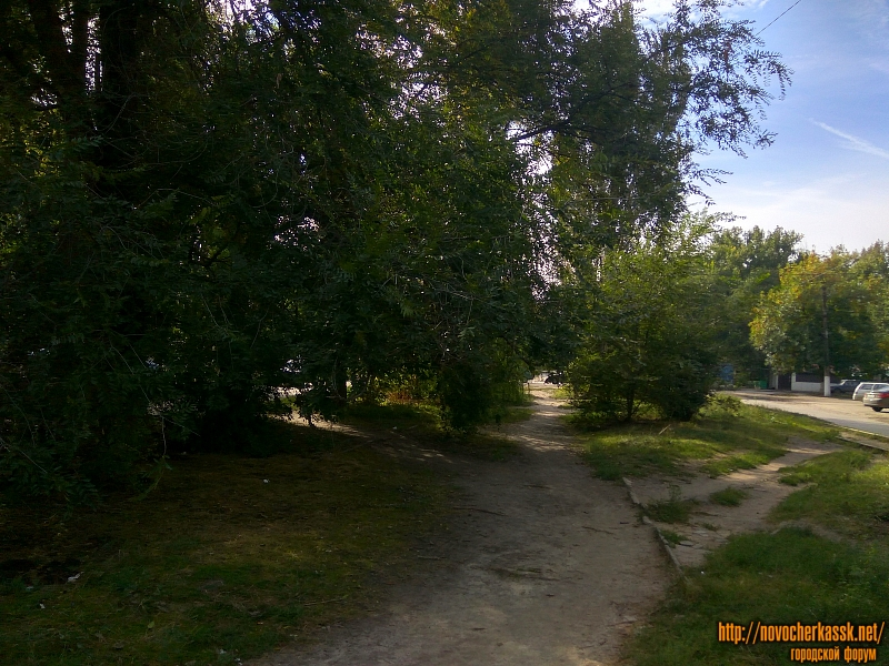 Аллея на улице Чехова