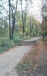 Дорога на Соцгороде к остановке «НЭВЗ»