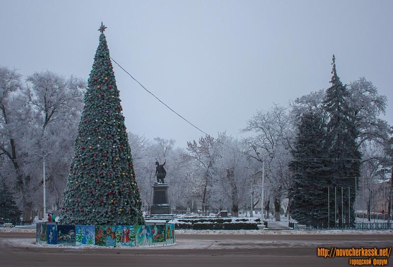 Ёлка и памятник Платову