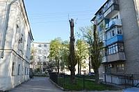 Ул. Комитетская, 61