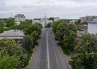 Цветение каштанов на улице Московской