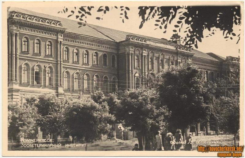 Зооветеринарный институт  (открытка напечатана в 1961 году)