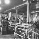 Новочеркасский ликеро-водочный завод. Конвеер водки