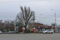 Продажа ёлок на проспекте Баклановском