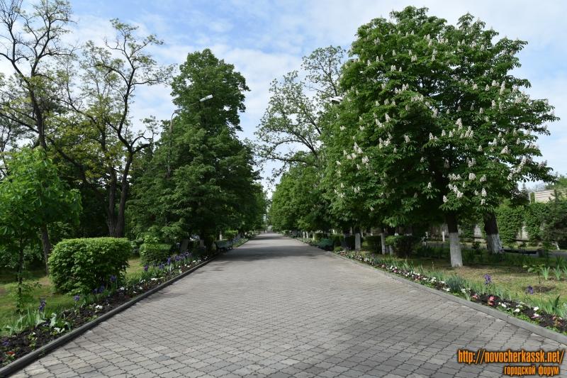 Аллея Александровского сада