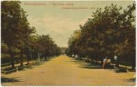 «Липовая аллея Александровского сада»
