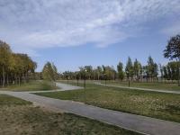 Парк на Октябрьском